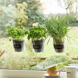Kräutertopf-Trio 'Basil' für Küchenfenster inkl. Beschriftungsfolie und Kreide | Fresh Herbs Trio | Kräuter | Garten | Kräutergarten | Fensterdekoration | Geschenk | Ø 13 cm | Höhe: 16 cm - 1