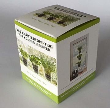 Kräutertopf-Trio 'Basil' für Küchenfenster inkl. Beschriftungsfolie und Kreide | Fresh Herbs Trio | Kräuter | Garten | Kräutergarten | Fensterdekoration | Geschenk | Ø 13 cm | Höhe: 16 cm - 7