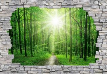 3D Fototapete »3D Sunny Forest Mauer«, 384/260 cm