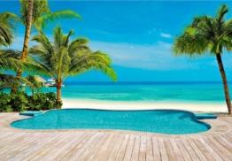 Fototapete »Palmen Pool« 366/254 cm