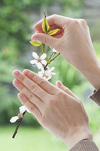 Komar - Window-Sticker CHEERFUL - 31 x 31cm - Fensterdeko, Fenstersticker, Fensterfolie, Schmetterlinge, Butterfly, Blume, Zweige - 16006 - 3
