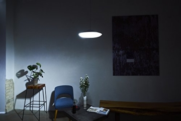 Luke Roberts 'Model F' - Smart LED Pendant Lamp with App Control, Bluetooth, indirect Light, 16 Mio. RGBWW Colors, Amazon Alexa Skill; perfect for any Smart Home - 7