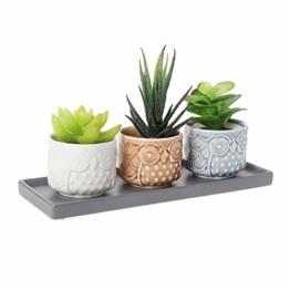 T4U 7cm Keramik Sukkulenten Töpfe Kaktus Pflanze Töpfe Mini Blumentöpfe Eule Muster mit grauen Untersetzer - 1