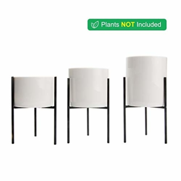 T4U 8cm Mini Sukkulenten Töpfchen Weiß Keramik Rund mit Ständer 3er-Set für Miniaturpflanzen Zimmerpflanzen Kakteen - 4