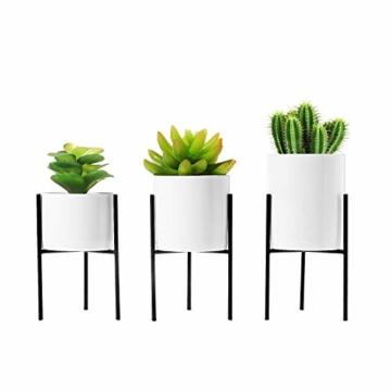 T4U 8cm Mini Sukkulenten Töpfchen Weiß Keramik Rund mit Ständer 3er-Set für Miniaturpflanzen Zimmerpflanzen Kakteen - 1