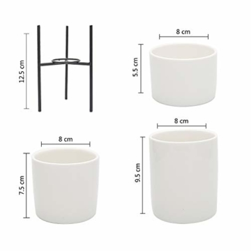 T4U 8cm Mini Sukkulenten Töpfchen Weiß Keramik Rund mit Ständer 3er-Set für Miniaturpflanzen Zimmerpflanzen Kakteen - 5