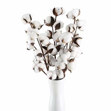 HUAESIN 3pcs Baumwolle Zweig 10 Köpfe Natürlich Getrocknete Blumen Künstliche Dekoblumen Weiss Kunstblumen Gefälschte Unechte Blumen für Vase Hochzeit Zimmer Cafe Dekoration - 1