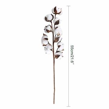 HUAESIN 3pcs Baumwolle Zweig 10 Köpfe Natürlich Getrocknete Blumen Künstliche Dekoblumen Weiss Kunstblumen Gefälschte Unechte Blumen für Vase Hochzeit Zimmer Cafe Dekoration - 7