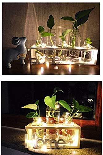SUNRUNERS Glas-Pflanzgefäße für den Innenbereich mit Flaschenbeleuchtung, Hydrokultur, Pflanzen-Holzständer für Zuhause, Büro, Dekoration, Rohholz, 5 Terrarium - 7