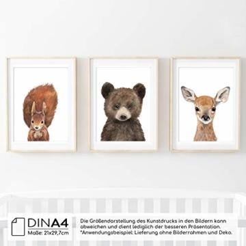 Frechdax® 3er-Set Bilder Kinderzimmer Deko Junge Mädchen - DIN A4 Poster Tiere - Wandbilder - Porträt | Waldtiere Safari Afrika Tiere Porträt (3er Set Bär, REH, Eichhörnchen) - 3